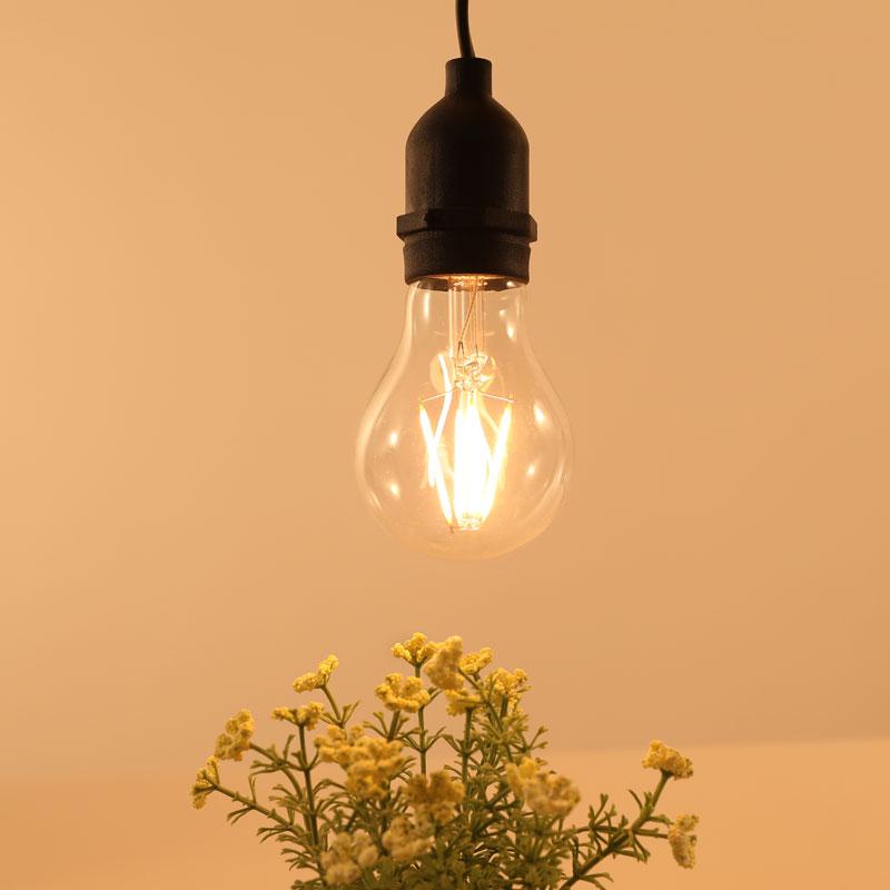 A60 LED Light Bulb 4W 2700K E27 Lamp Base