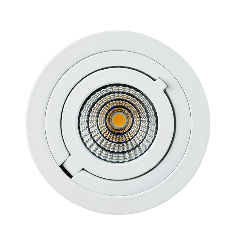 Recessed COB LED Downlight with CE RoHS Certificate aluminum Housing  6W/9W 3000K