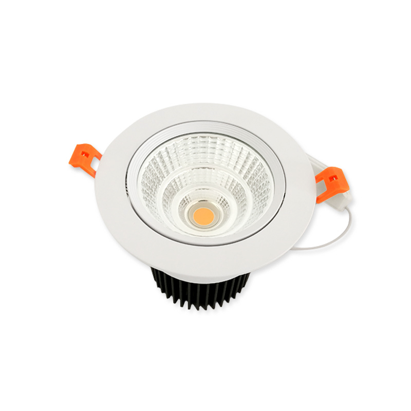 Popular Angle Adjustable Model 22W LED Ceiling Light Downlight